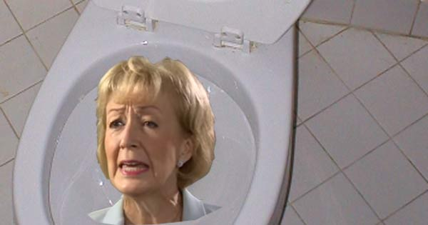 Andrea Leadsom's career meets some forgotten faces as it is flushed down the toilet